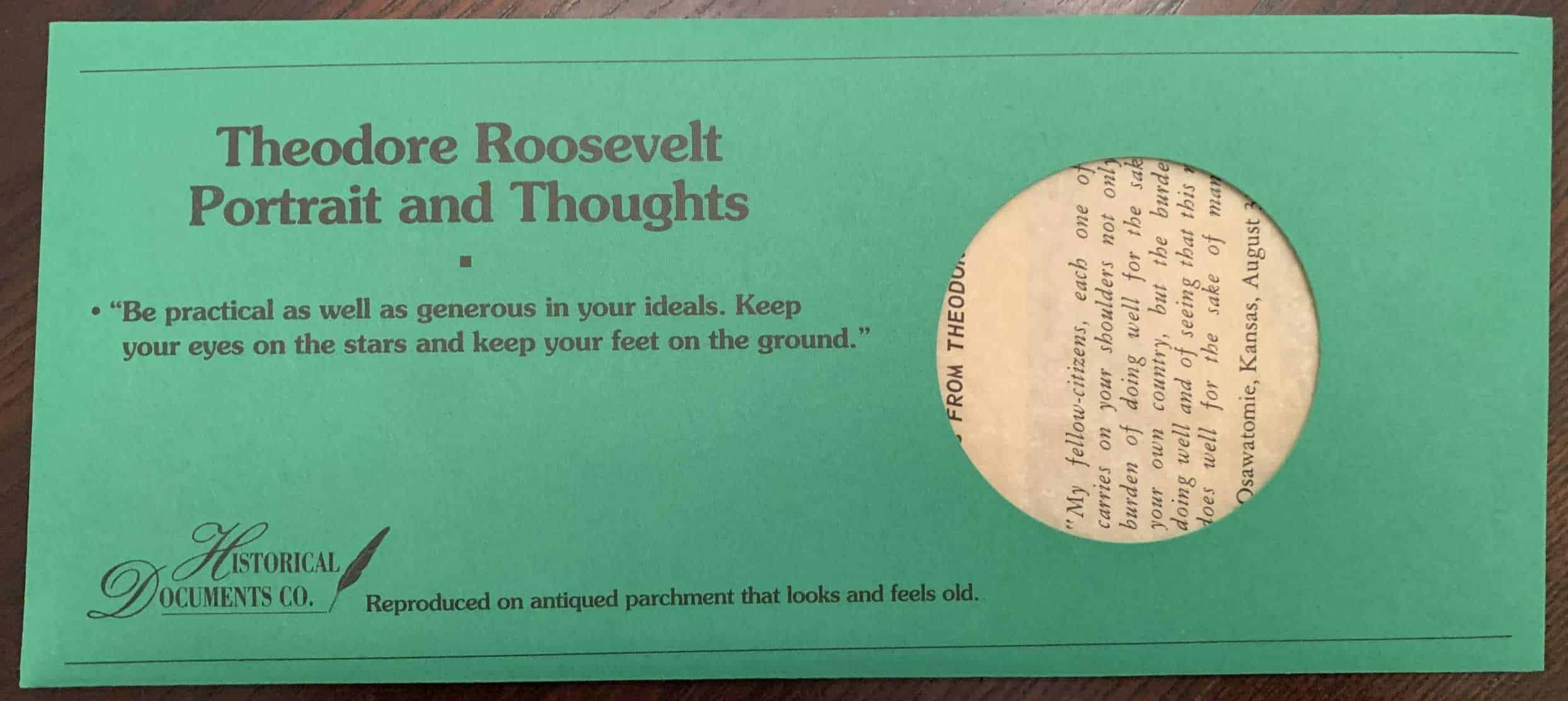 Theodore Roosevelt Portrait and Thoughts